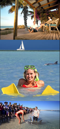 Monkey Mia Dolphin Resort - Nambucca Heads Accommodation