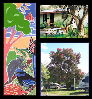 Bushland Cabins - Nambucca Heads Accommodation