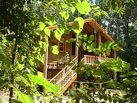 Rivers Edge Rainforest Retreat - Nambucca Heads Accommodation