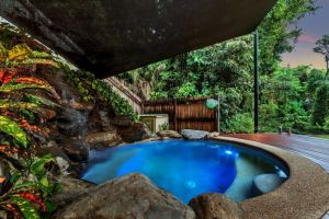 Platypus Springs Rainforest Retreat - Nambucca Heads Accommodation