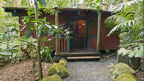 Springbrook Lyrebird Retreat - Nambucca Heads Accommodation