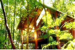 The Canopy Treehouses - Nambucca Heads Accommodation