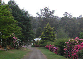 Mountain Rivers Lodge - Nambucca Heads Accommodation