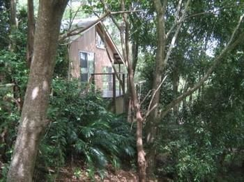 Belleaposs at Montville - Nambucca Heads Accommodation
