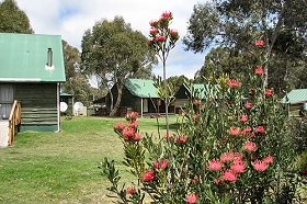 Derwent Bridge Chalets  Studios - Nambucca Heads Accommodation