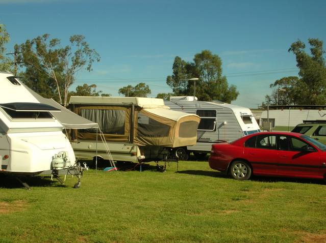 Crocodile Caravan Park - Nambucca Heads Accommodation
