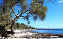 Currarong Beachside Holiday Park - Nambucca Heads Accommodation