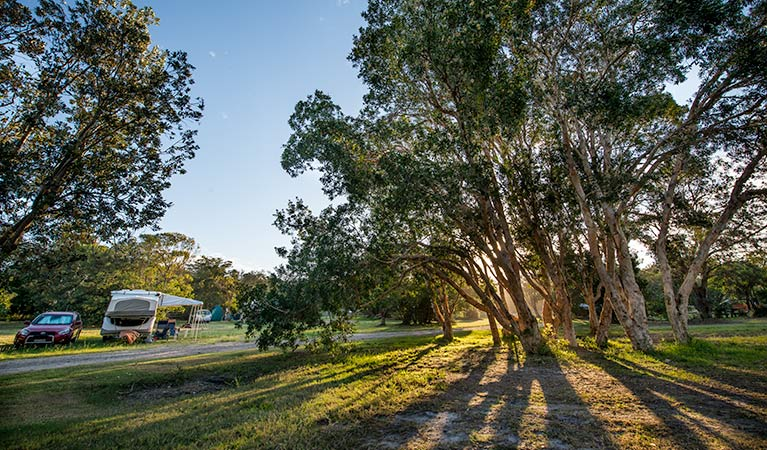 Delicate campground - Nambucca Heads Accommodation