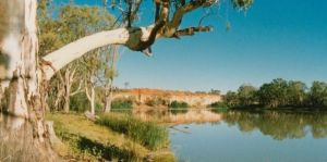 Border Cliffs River Retreat - Nambucca Heads Accommodation