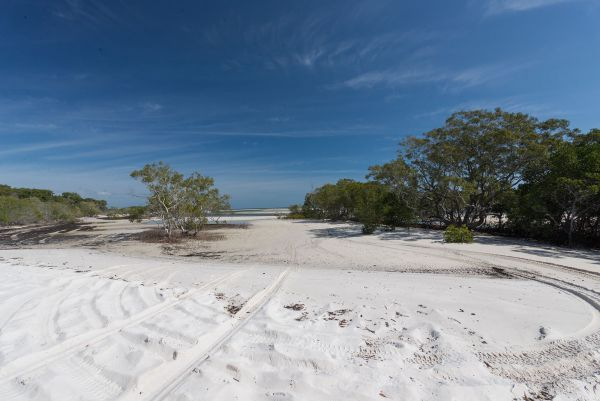 Fraser Island National Park Camping Ground - Nambucca Heads Accommodation