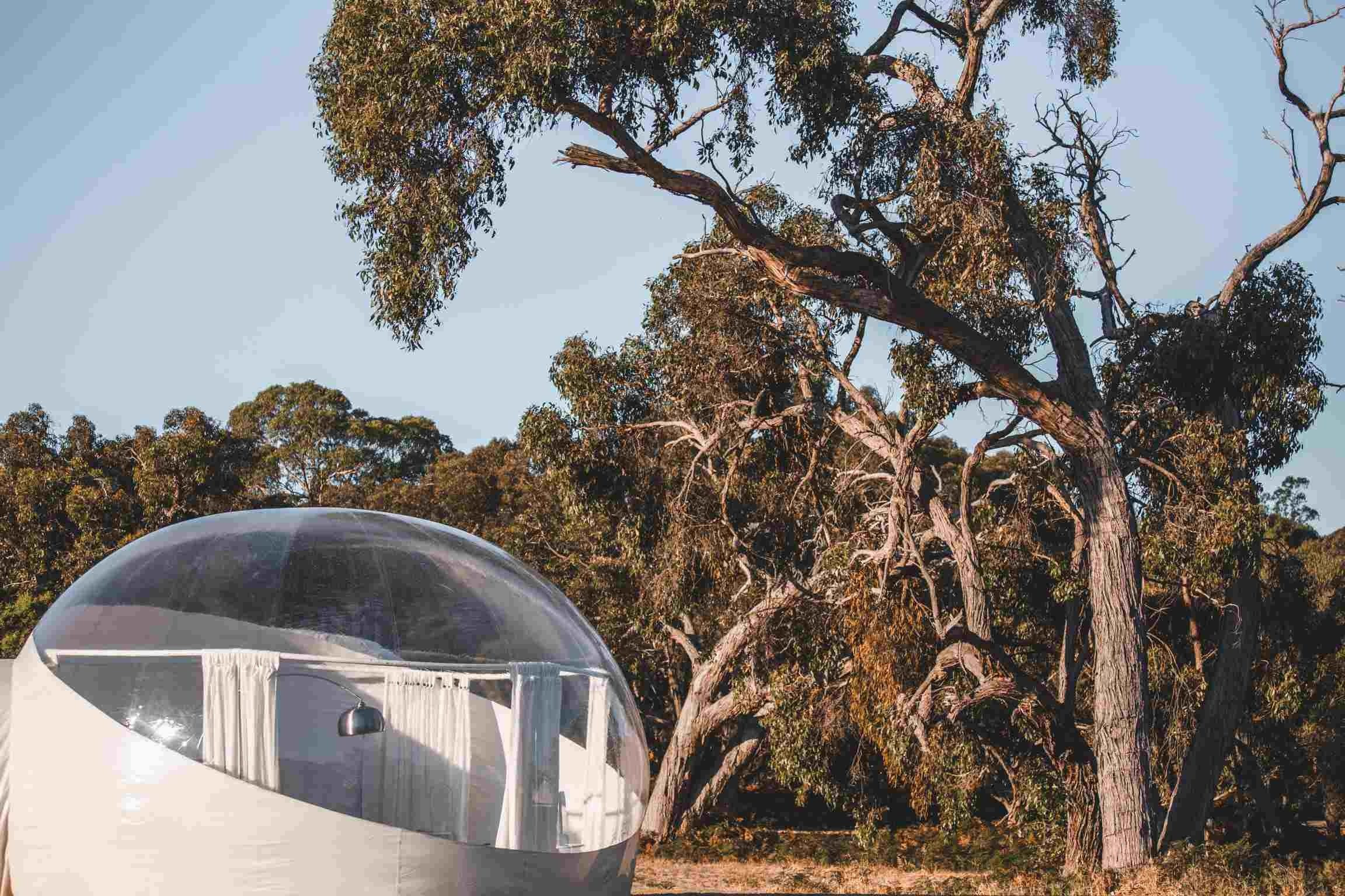 Coonawarra Bubble Tents - Nambucca Heads Accommodation
