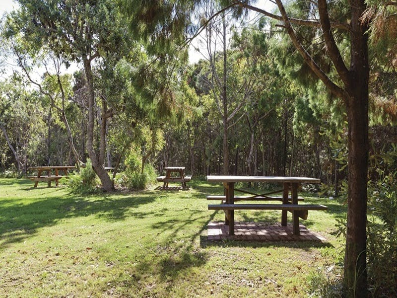 Illaroo group camping area - Nambucca Heads Accommodation