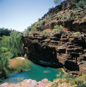 Dales Gorge Camp at Karijini National Park - Nambucca Heads Accommodation