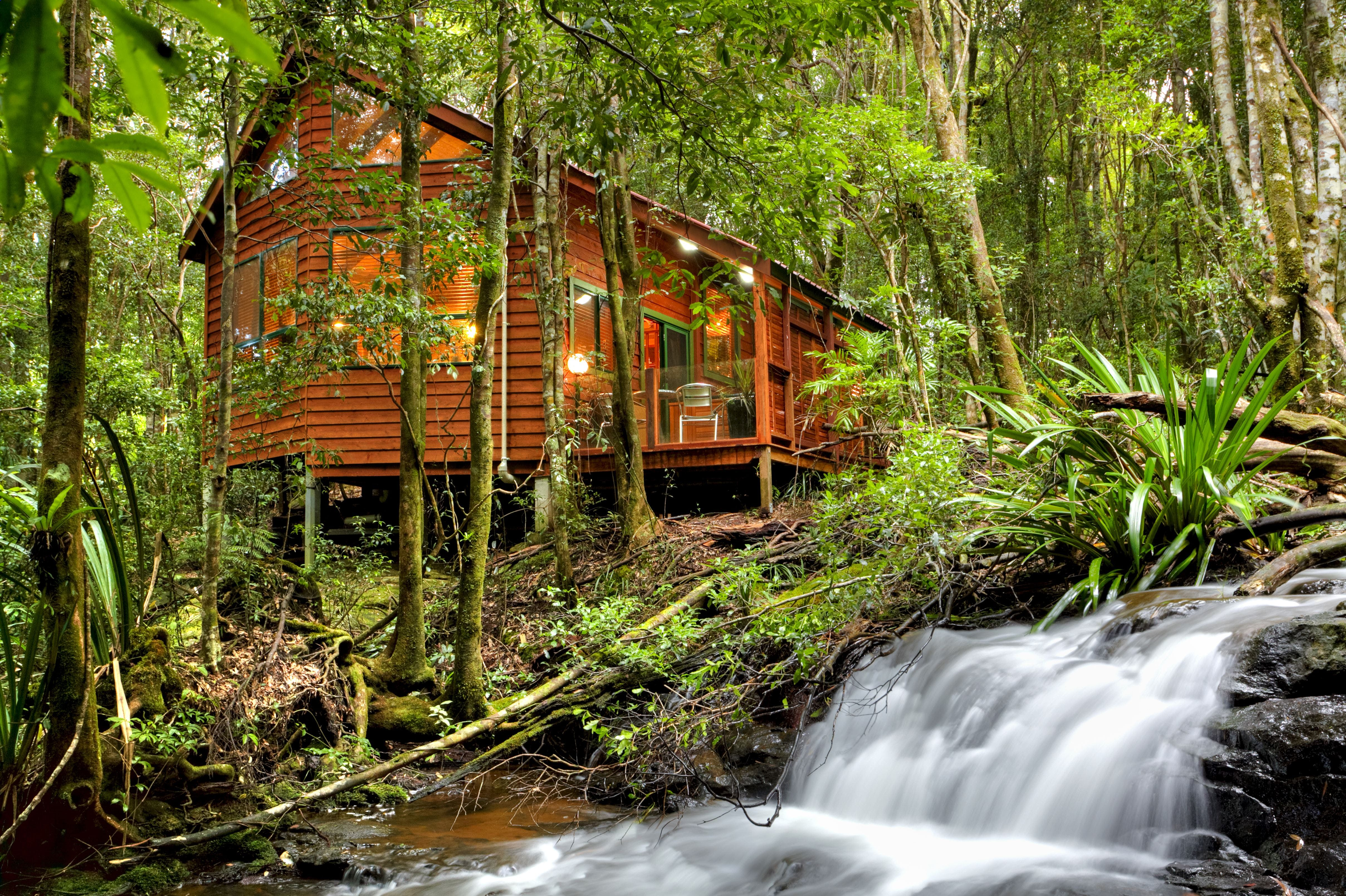 The Mouses House - Rainforest Retreat - Nambucca Heads Accommodation