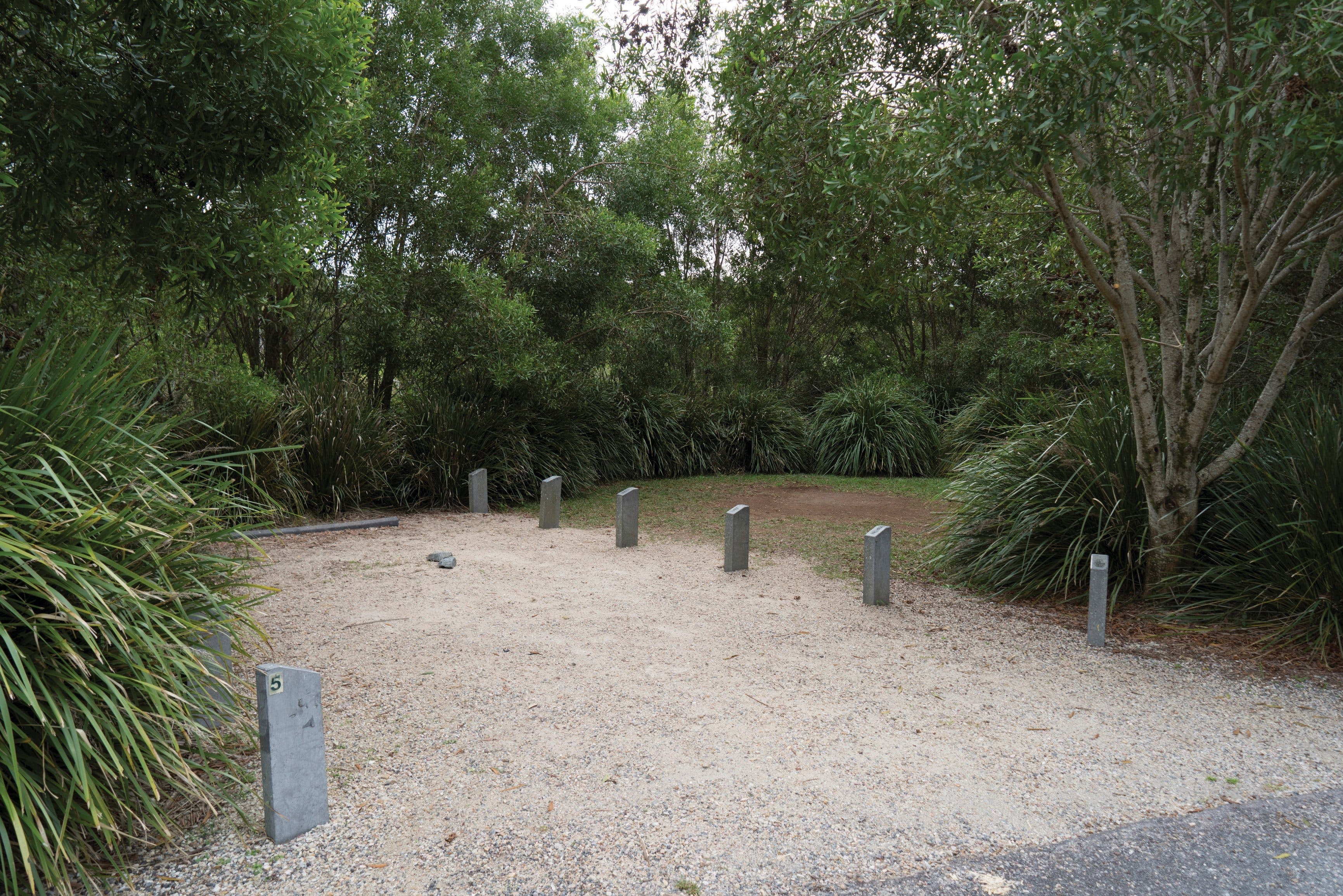 Springbrook National Park camping - Nambucca Heads Accommodation