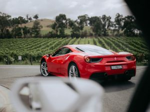 The Prancing Horse Supercar Drive Day Experience - Melbourne Yarra Valley - Nambucca Heads Accommodation