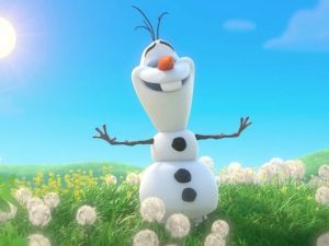Meet Olaf from Frozen - Nambucca Heads Accommodation