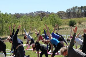 Yoga in the Vines - Nambucca Heads Accommodation