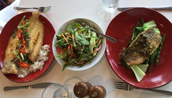 Scampi's Seafood Bar  Grill - Nambucca Heads Accommodation