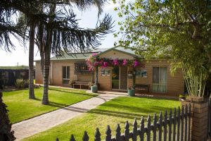 Capricorn Holiday Park - Nambucca Heads Accommodation