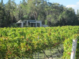 Just Red Wines Cabins - Nambucca Heads Accommodation